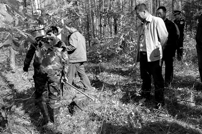 塔河县法院院长陆长平组织现场勘验被告人盗伐林木的犯罪证据.
