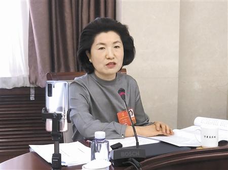 全国人大代表阎美蓉议最高人民法