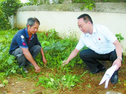 河南省鹤壁市淇滨区法院加大调解工作力度努力解决群众实际问题
